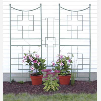 Garden Trellis Design on Trellis Designs  Wrought Iron Trellis Designs  Iron Garden Trellis